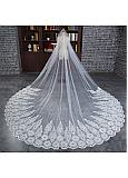 In Stock Fabulous Tulle Cathedral Wedding Veil With Lace Appliques