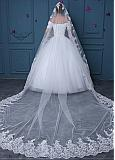 In Stock Marvelous Tulle Wedding Veil With Lace Appliques